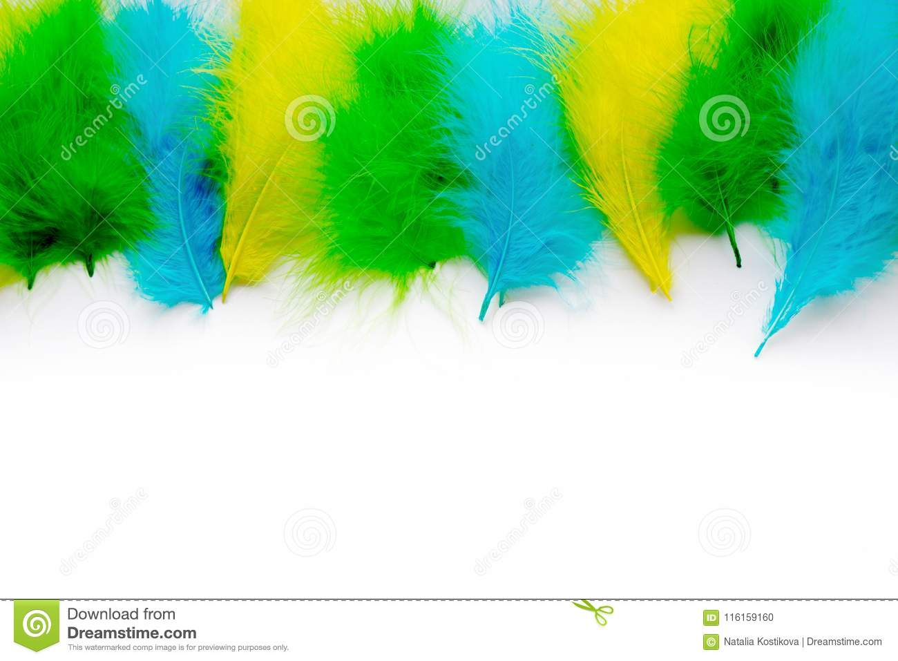 8f17b164 The Feathers Of Birds Are Green, Yellow And Blue. White Background ...