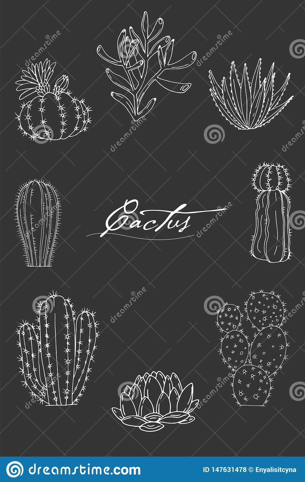 Poster With Ornament Hand Drawn Lettering Cacti And Succulents On A Chalkboard Background Stock Vector Illustration Of Cactus Miscellaneous 147631478