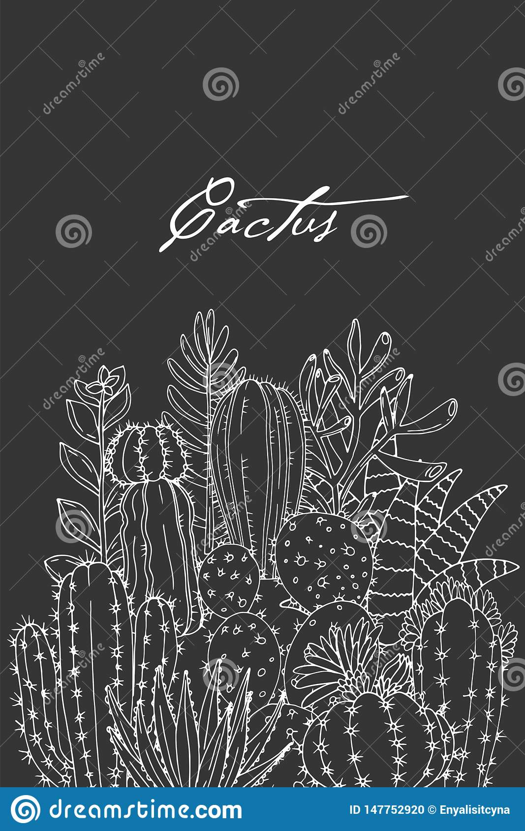 Poster With Ornament Hand Drawn Lettering Cacti And Succulents On A Chalkboard Background Stock Vector Illustration Of Flower Isolated 147752920