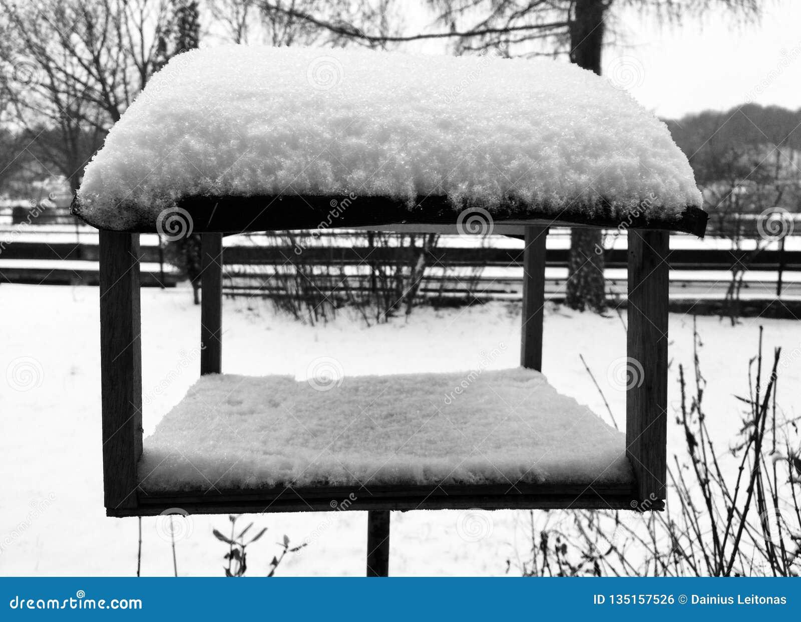 Posto di cibo per gli uccelli sotto neve all inverno