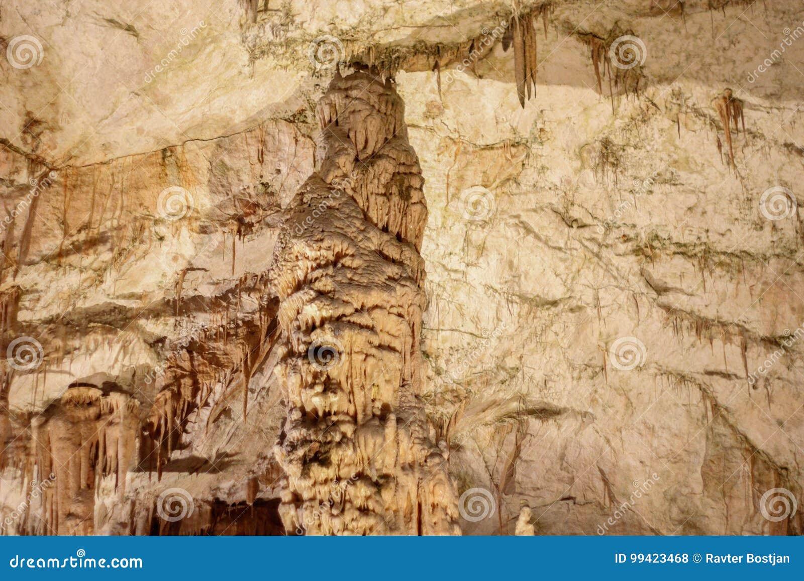 Postojnska jama | Höhle | Grotte