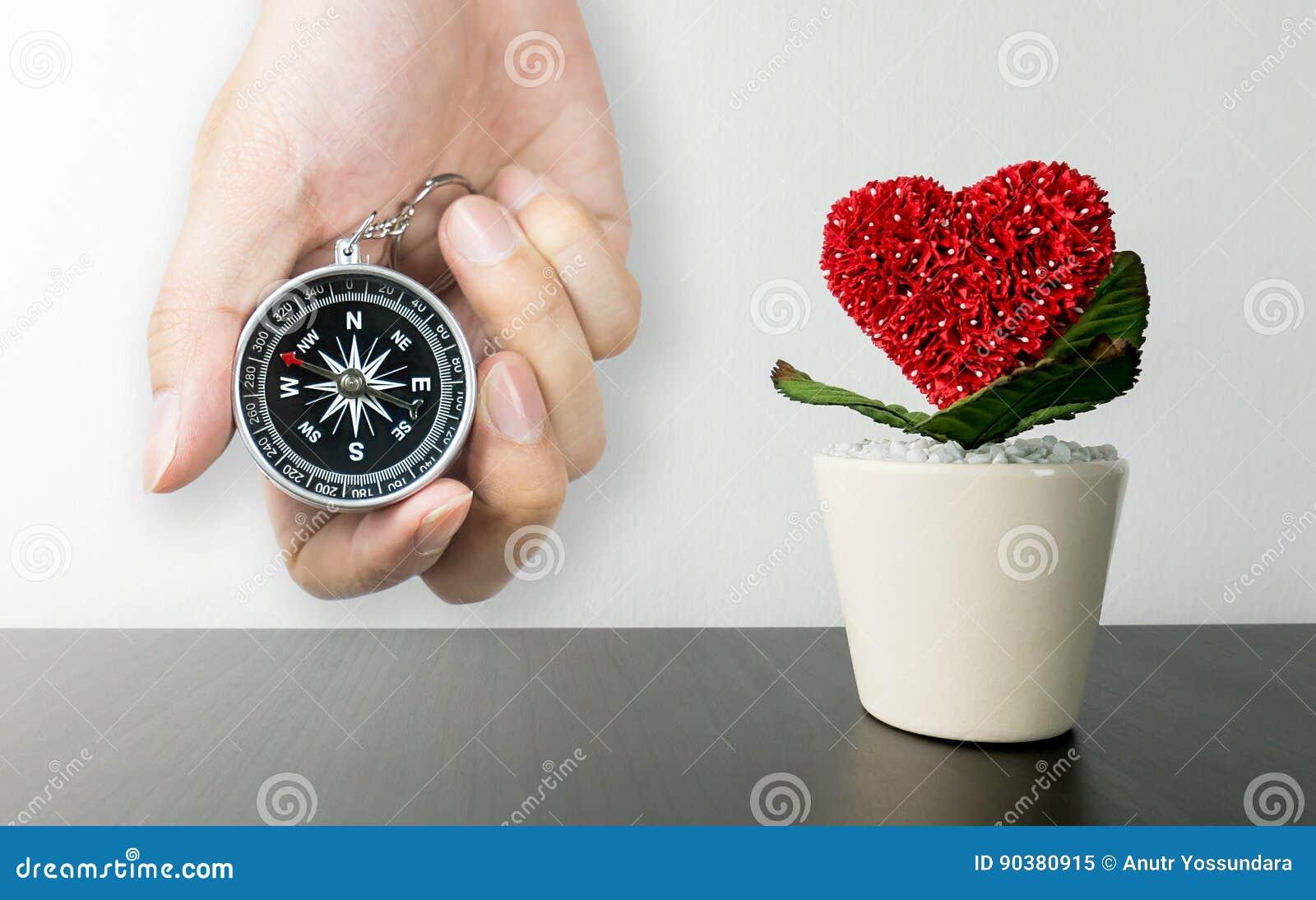 Pot de fleur en forme de coeur sur le bureau noir avec la boussole