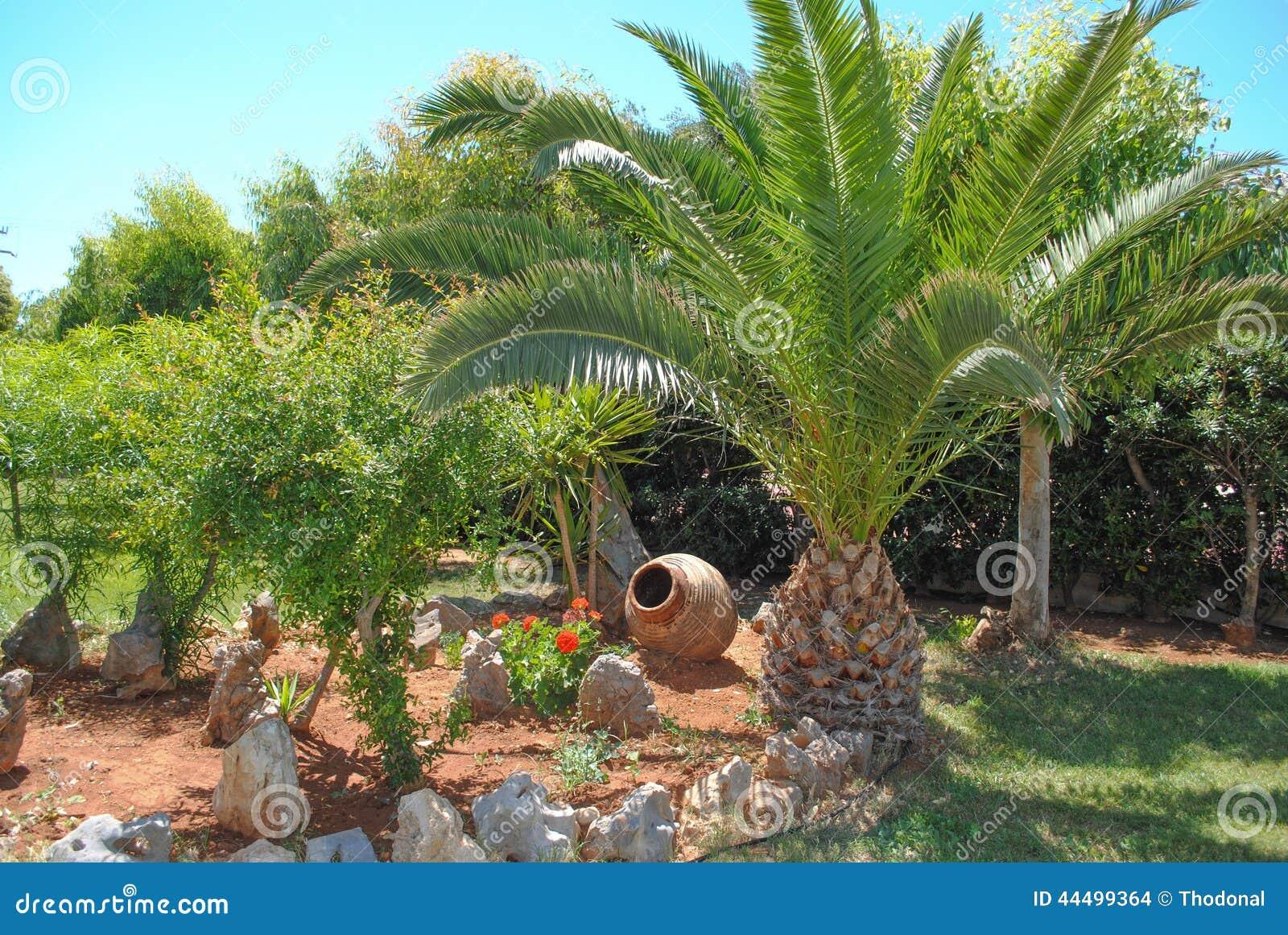 Pot de palmier et de poterie de terre photo stock image for Palmier dans pot