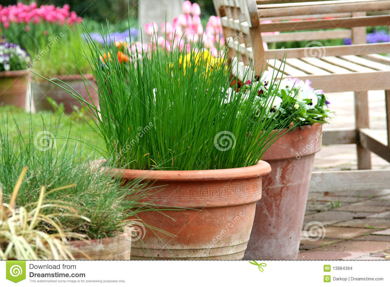 Pot Gardening On The Terrace  Herb And Flower Stock  ~ Pot De Fleur En Bois Exterieur