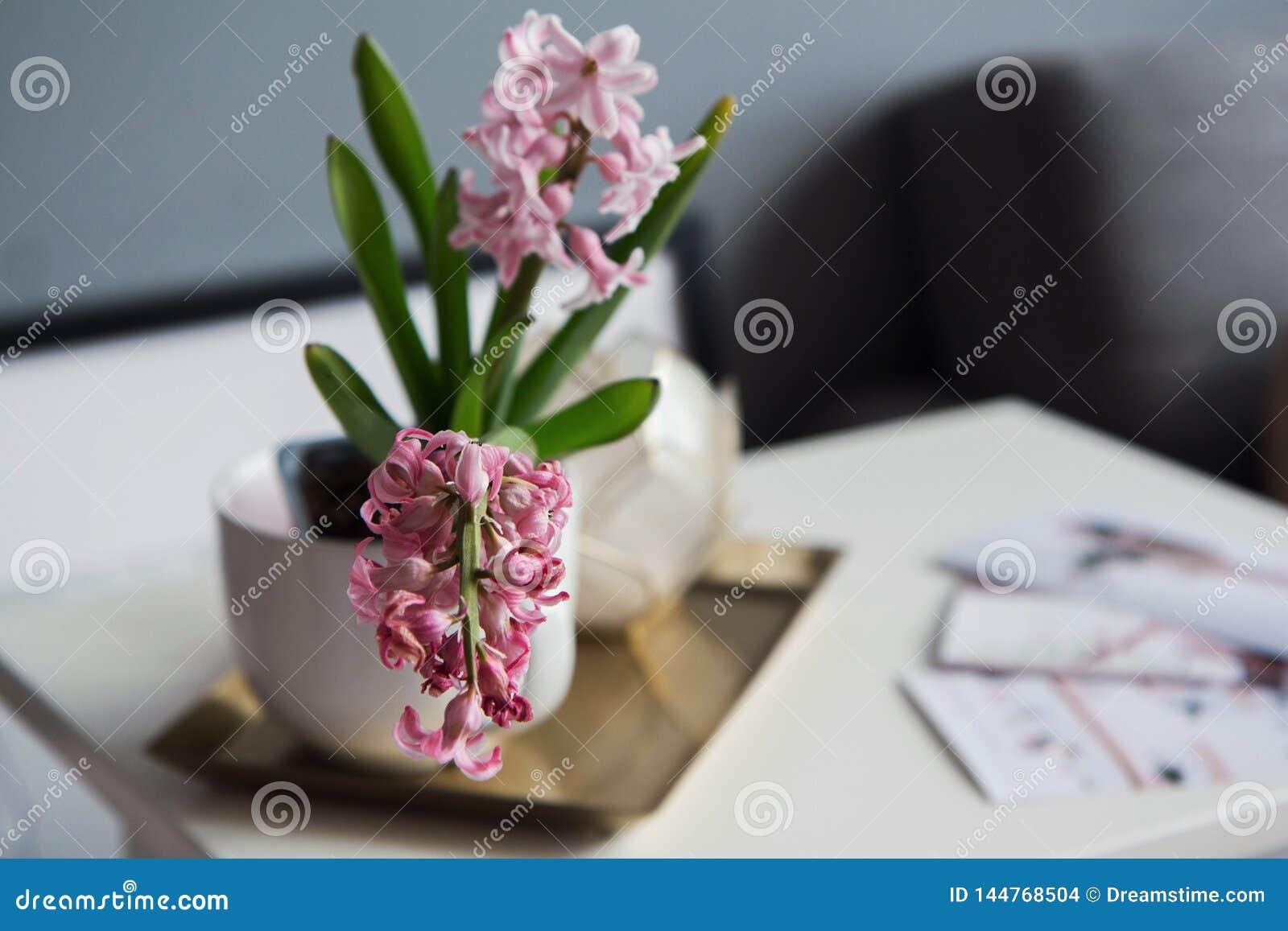 Pot met een bloem