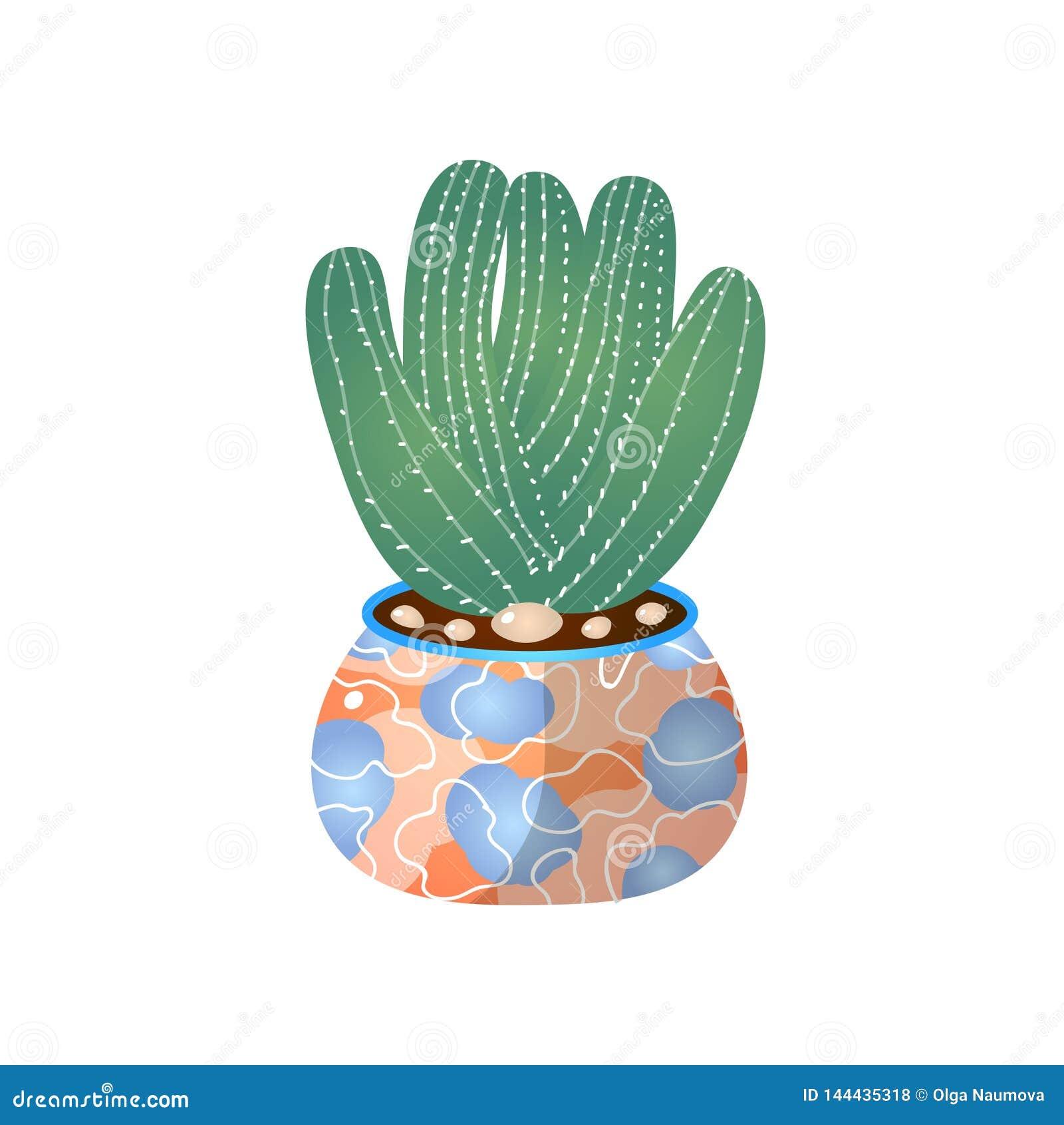 Pot Vert De Cactus Dans La Maison Pour La Decoration D