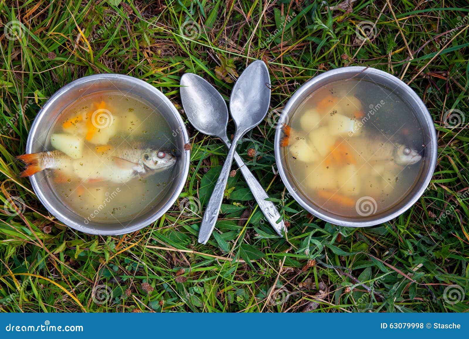 Download Potage de poissons photo stock. Image du vert, bouilli - 63079998