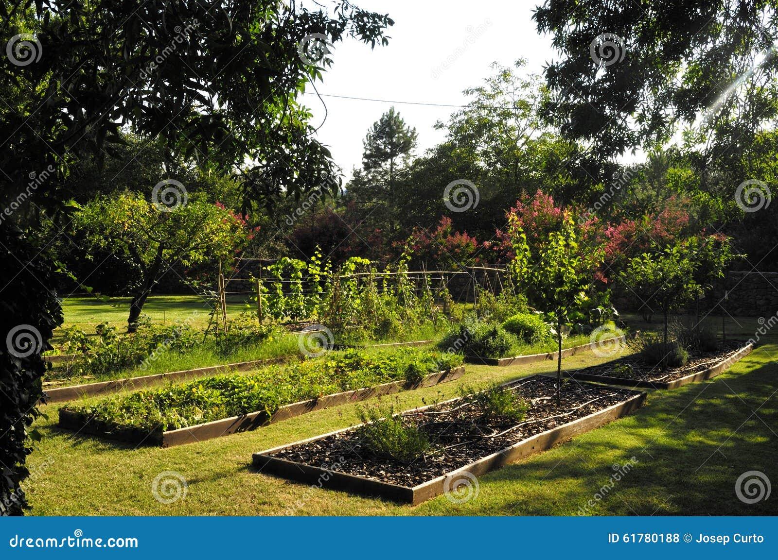 potager beau jardin avec des l gumes photo stock image 61780188. Black Bedroom Furniture Sets. Home Design Ideas