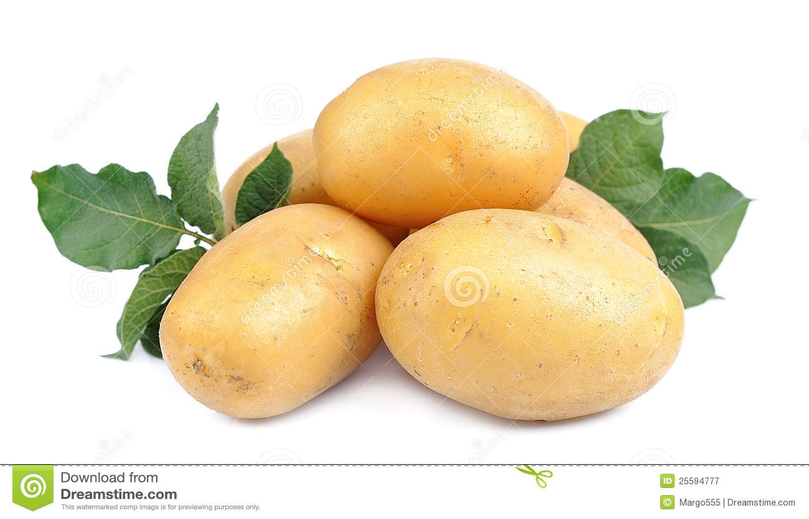 Potatisbarn