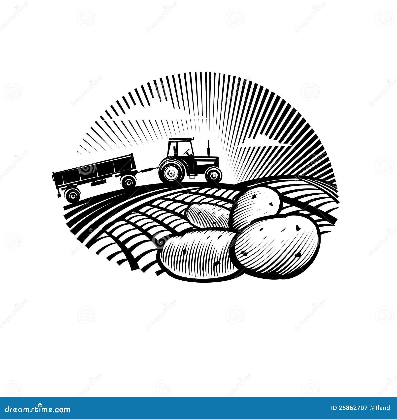 potato against farm tractor in a field stock vector