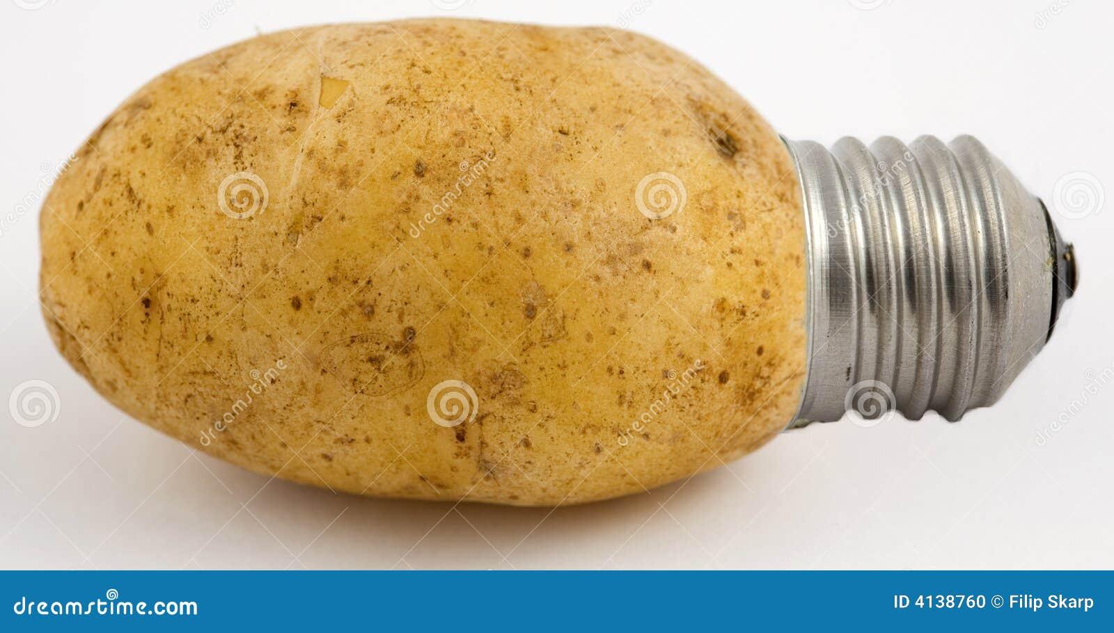 Potato Light Stock Photo - Image: 4138760