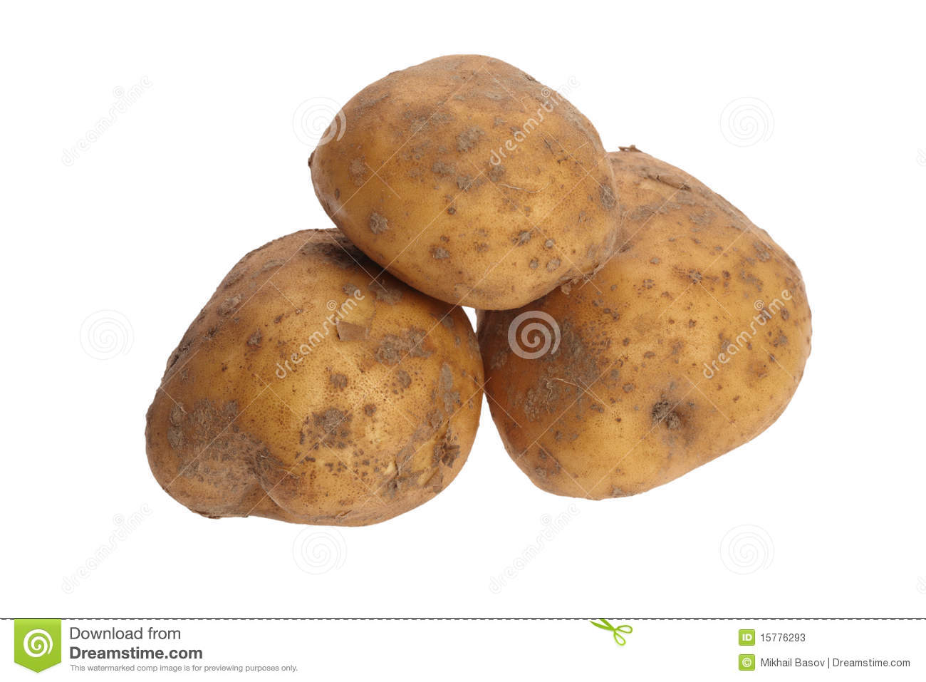 estimating osmolarity by change in volume of potato tuber Determining the water potential of potato tuber cells i will carry out an investigation that will enable me to determine the water potential of the tested potato tuber cells.