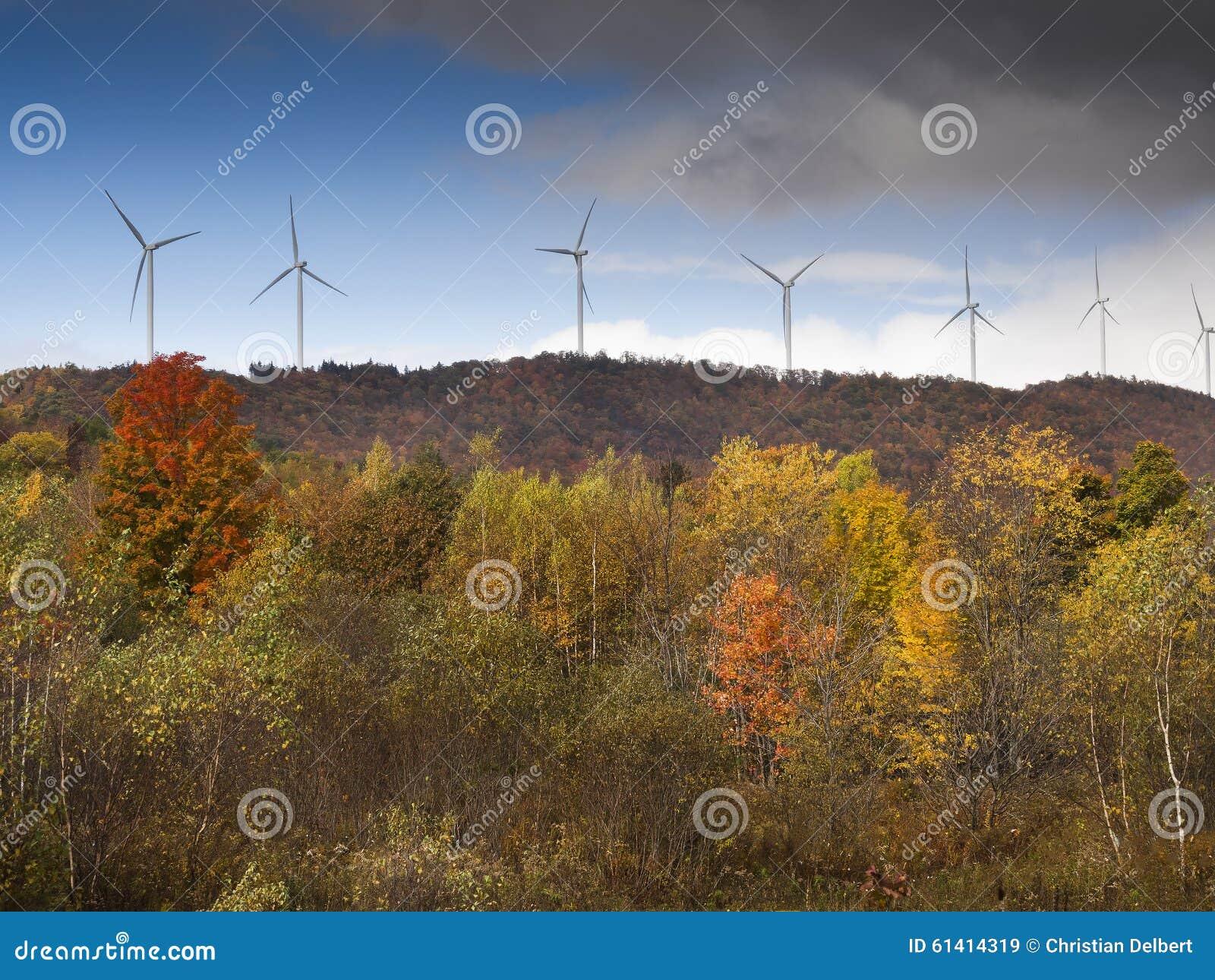 Potencia de Eco, turbinas de viento