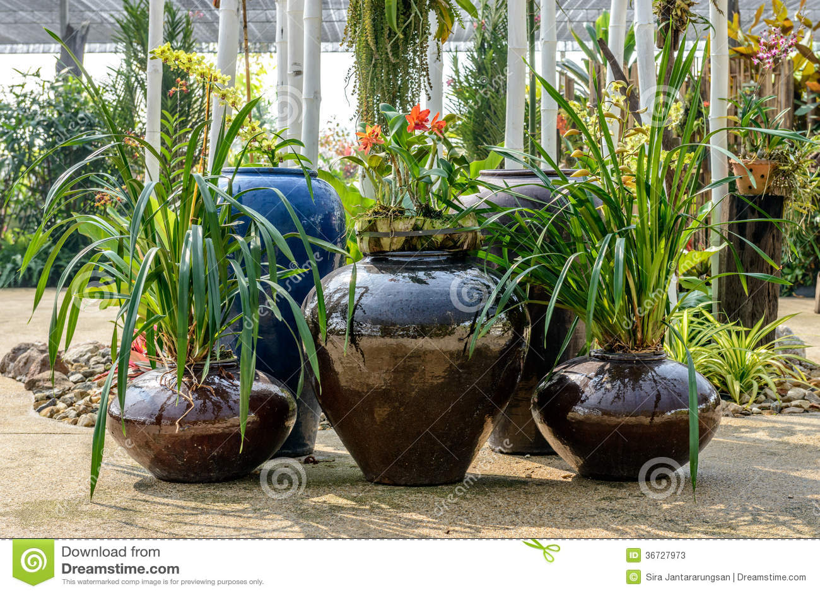 poterie de terre dans le jardin photos stock image 36727973. Black Bedroom Furniture Sets. Home Design Ideas
