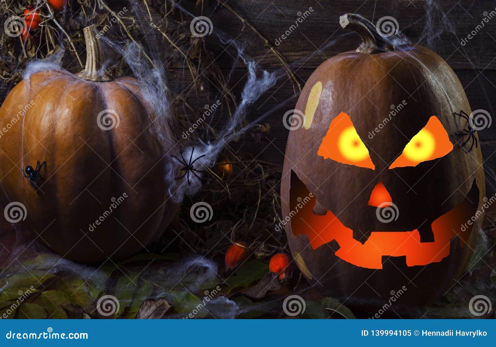 Potiron en Web et araignées sur le fond de l arbre pour Halloween 4