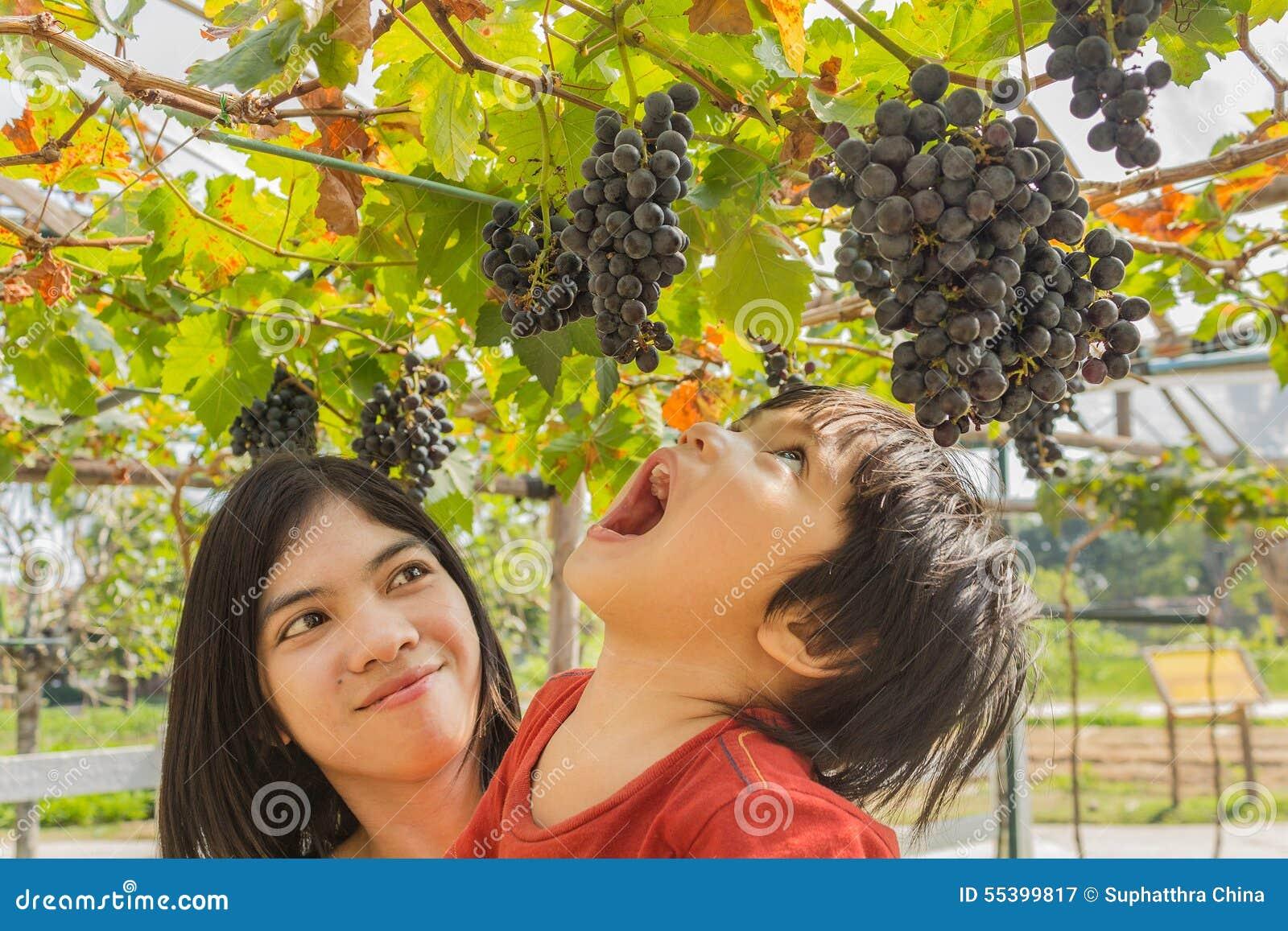 Potomstwa matkują kobiety z synem w winogrono winnicy
