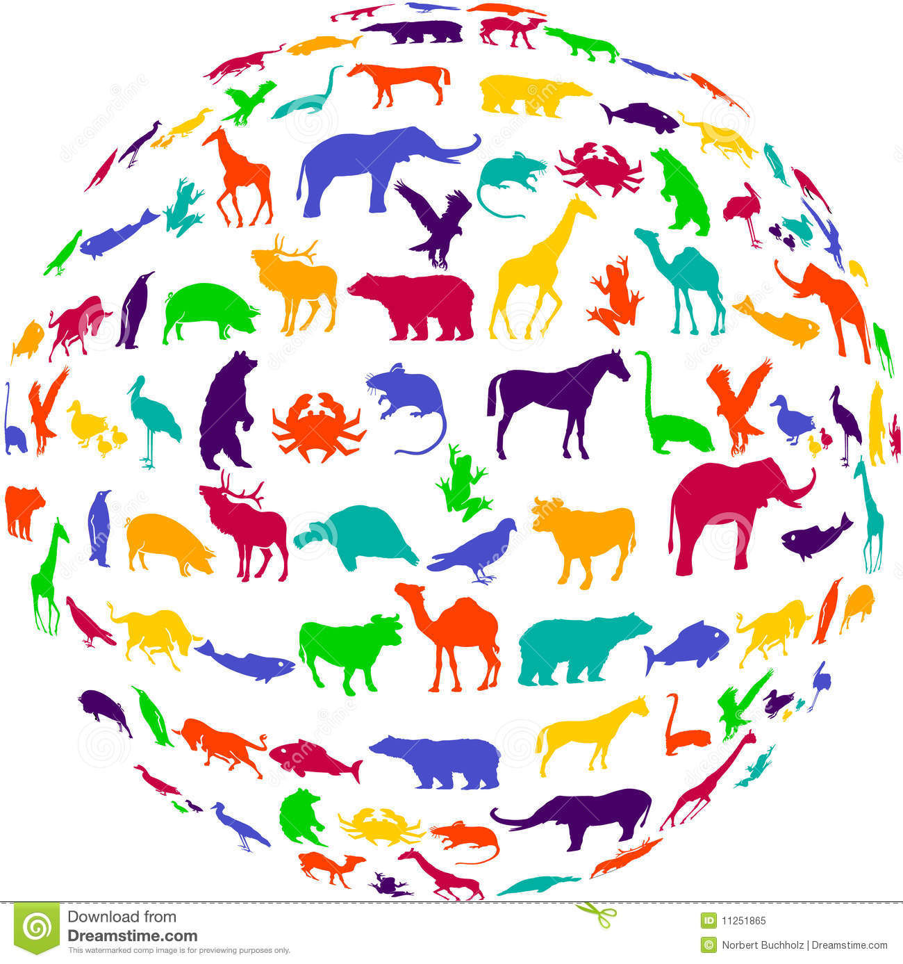 Potpourri Animal Kingdom Royalty Free Stock Photo - Image ...
