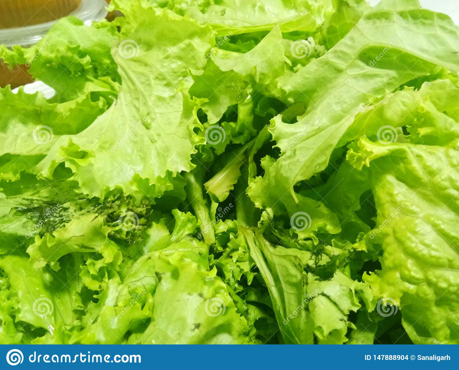 Potrzebuje niektóre zielonych warzywa