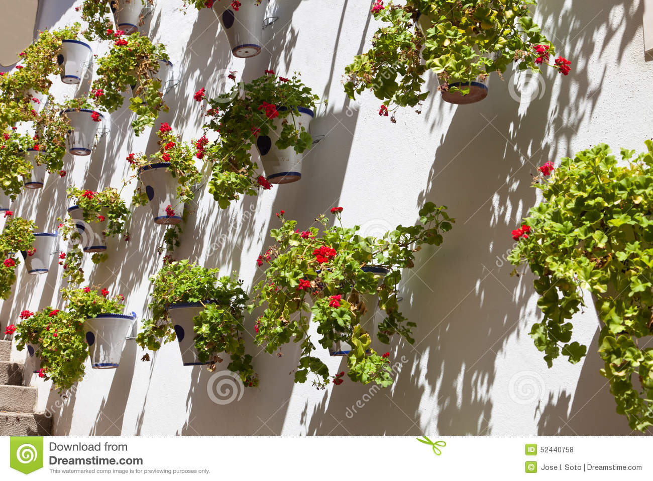 Pots of geraniums in cordoba spain stock photo image 52440758 - Care geraniums flourishing balcony porch ...