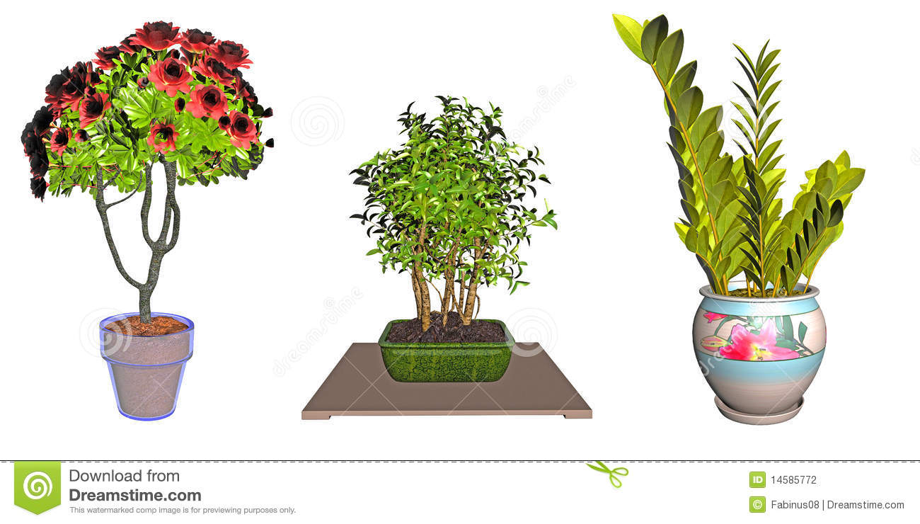 Stock photography potted plant illustrations image 14585772
