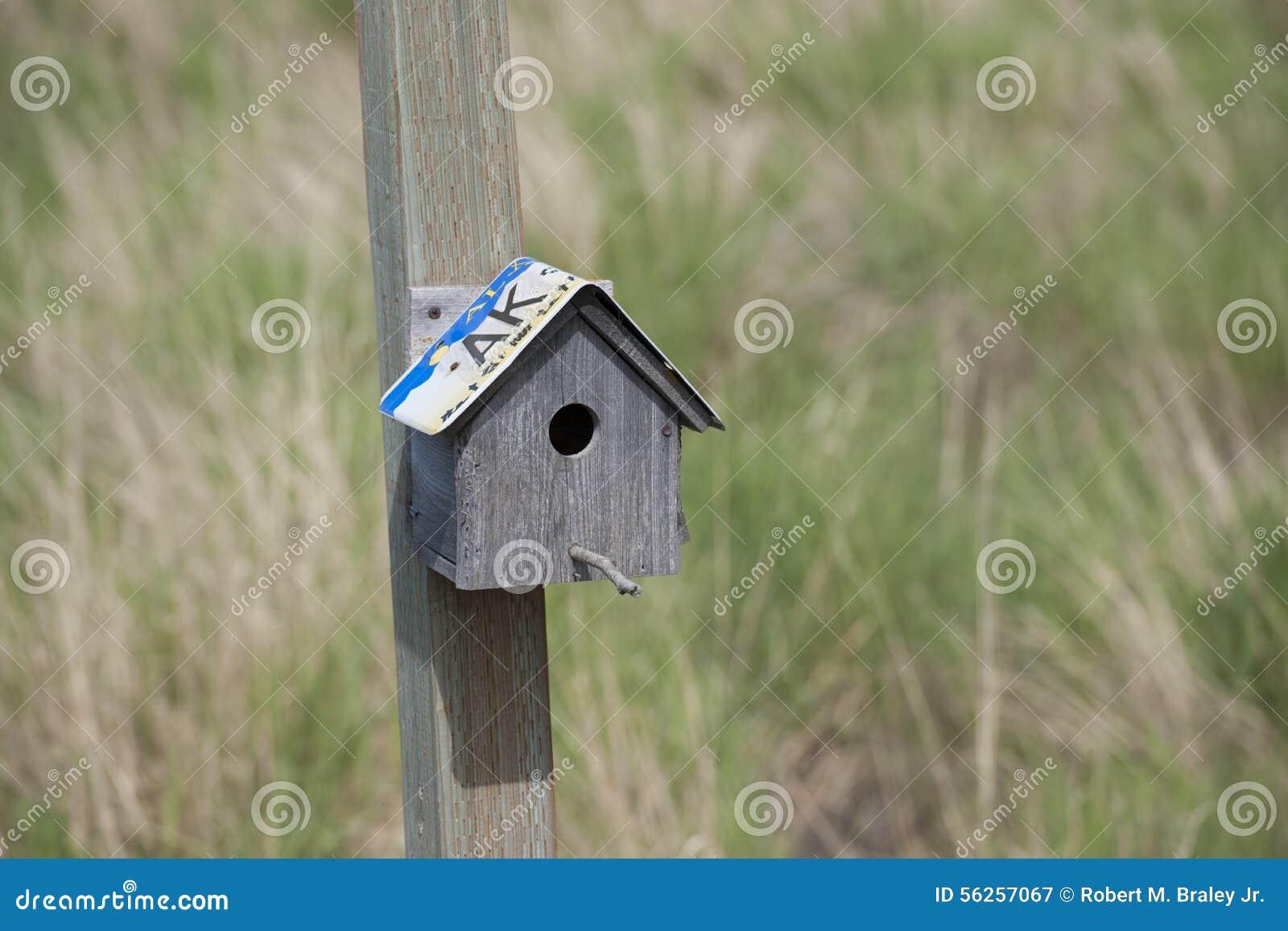 Download Potter Marsh Wildlife Refuge Anchorage Alaska Stock Image - Image of bird, child: 56257067