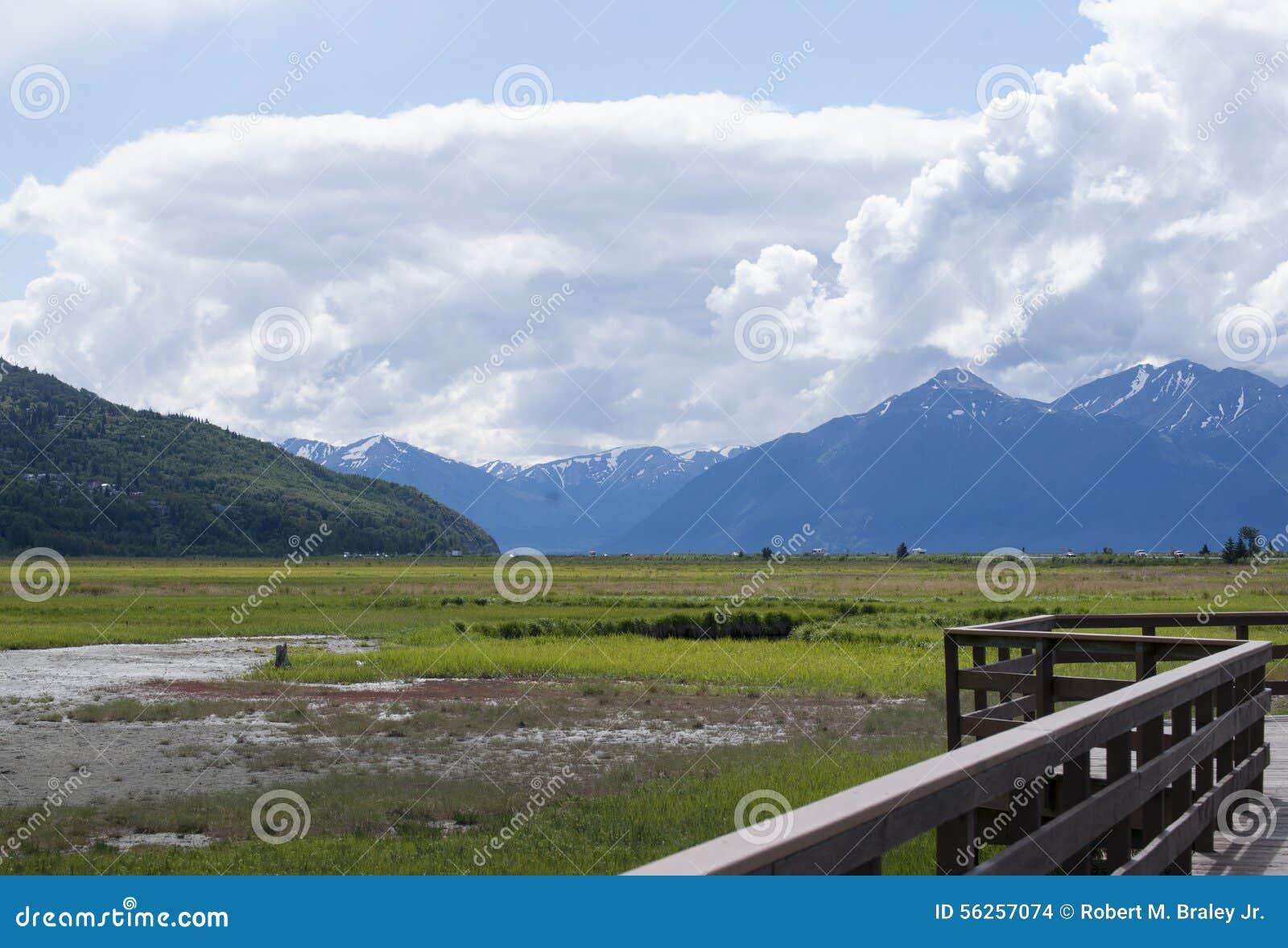 Download Potter Marsh Wildlife Refuge Anchorage Alaska Stock Photo - Image of 2015, refuge: 56257074