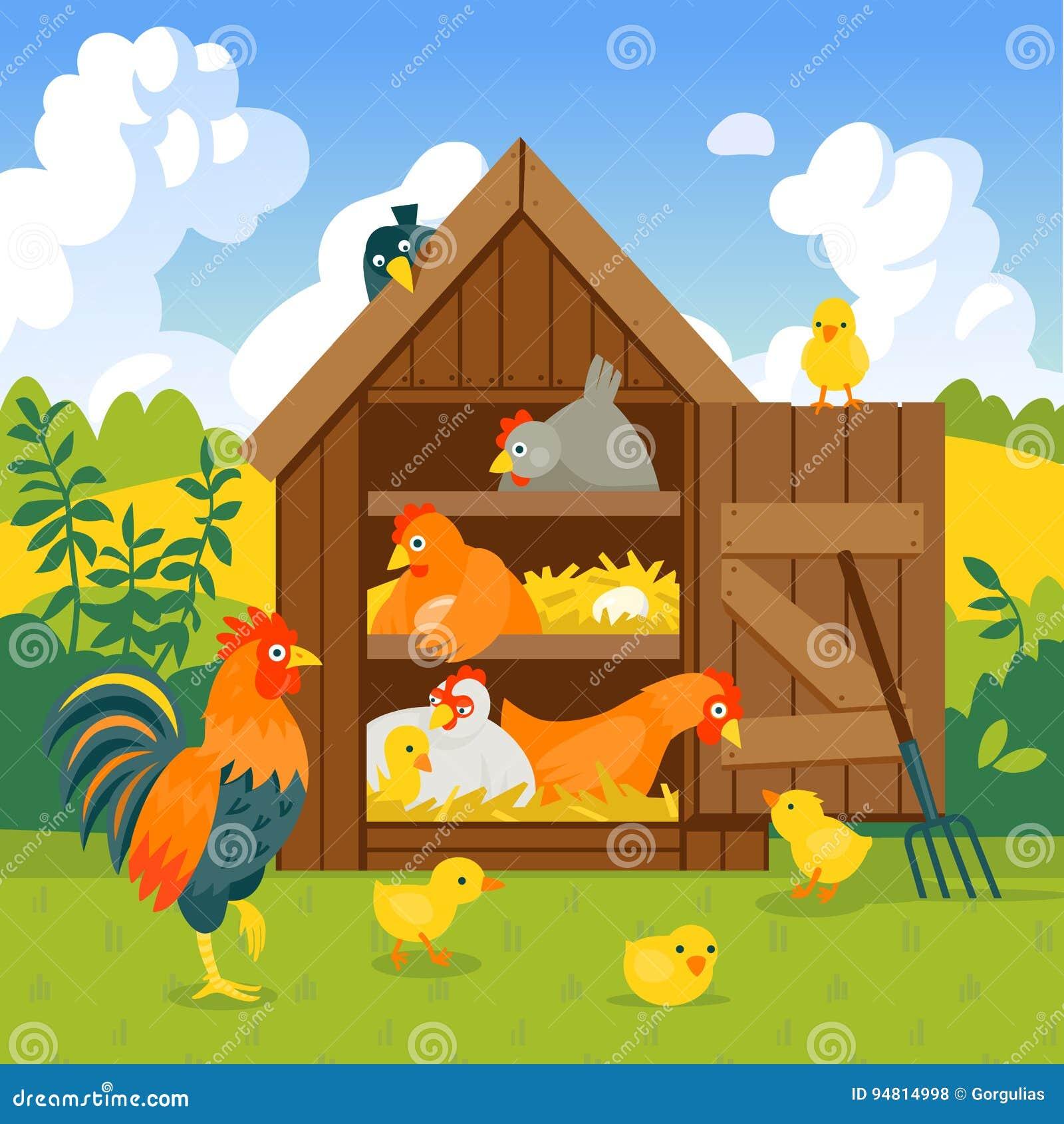 Dessin De Poulailler poulailler avec les oiseaux drôles sur une illustration verte de
