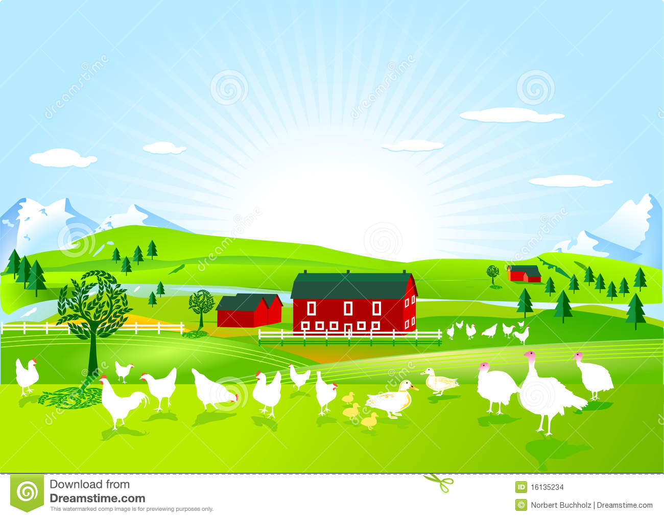 Farm House Floor Plans Poultry Farm Stock Images Image 16135234