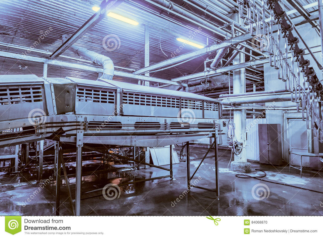 Stupendous Poultry Slaughterhouse Stock Photo Image Of Factory 84068870 Download Free Architecture Designs Rallybritishbridgeorg