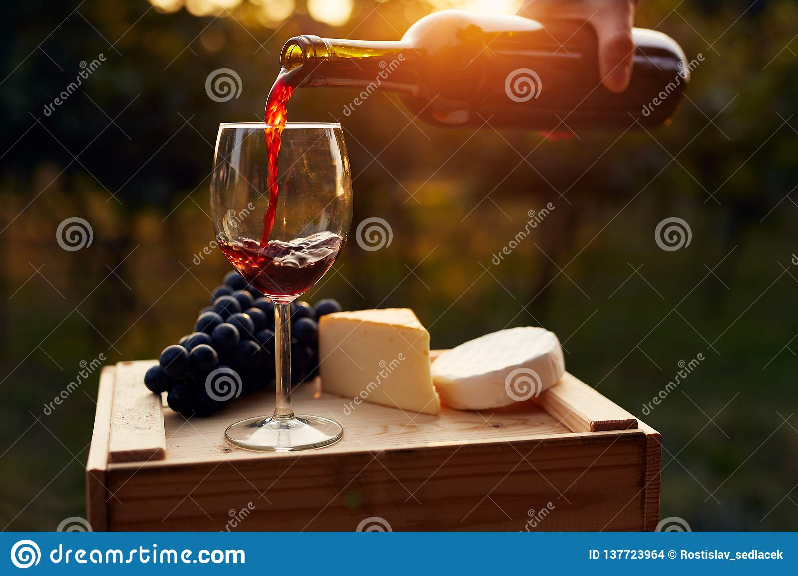 Pouring red wine into the glass in the vineyard