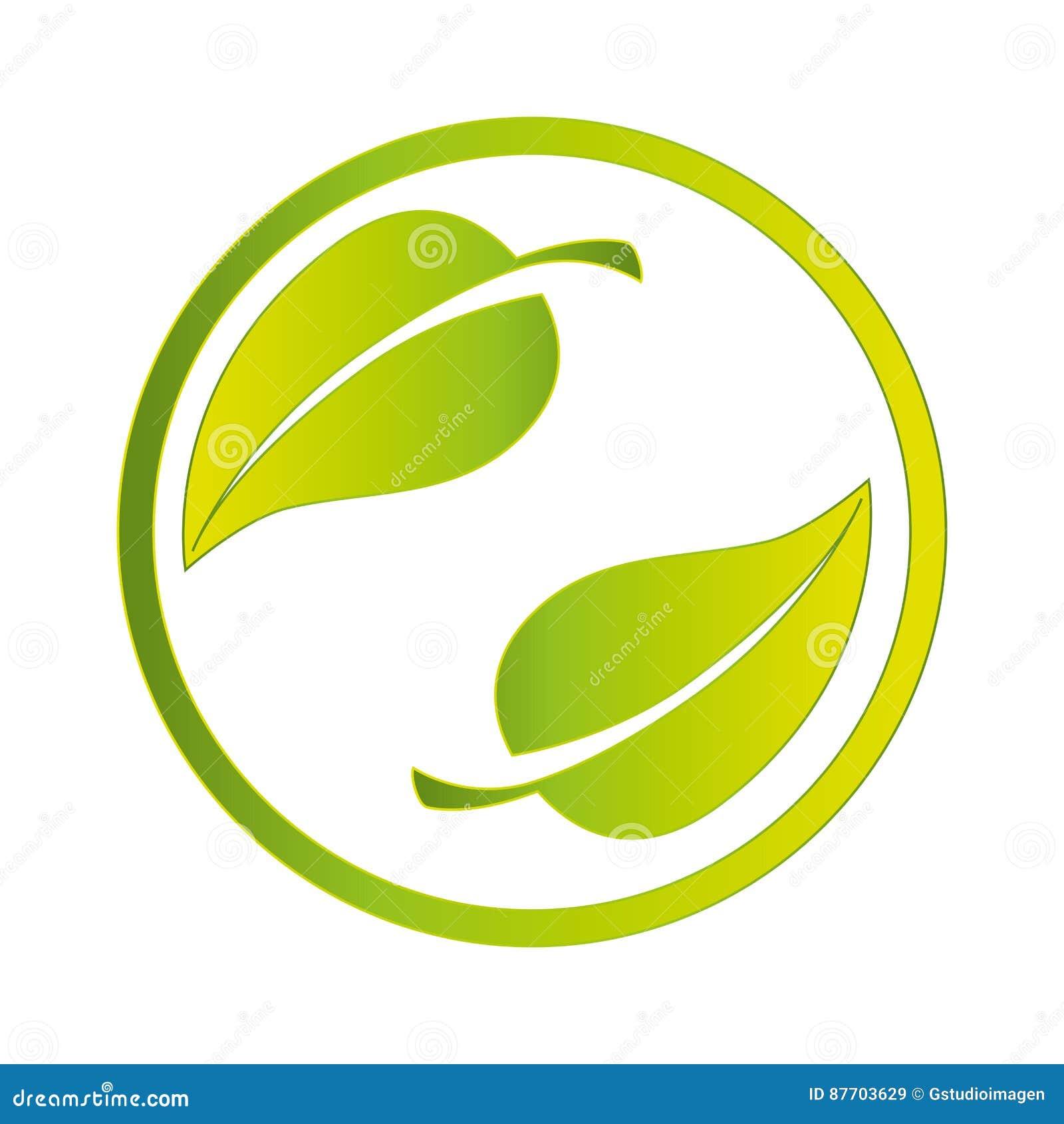 Pousse des feuilles le symbole de phytoécologie