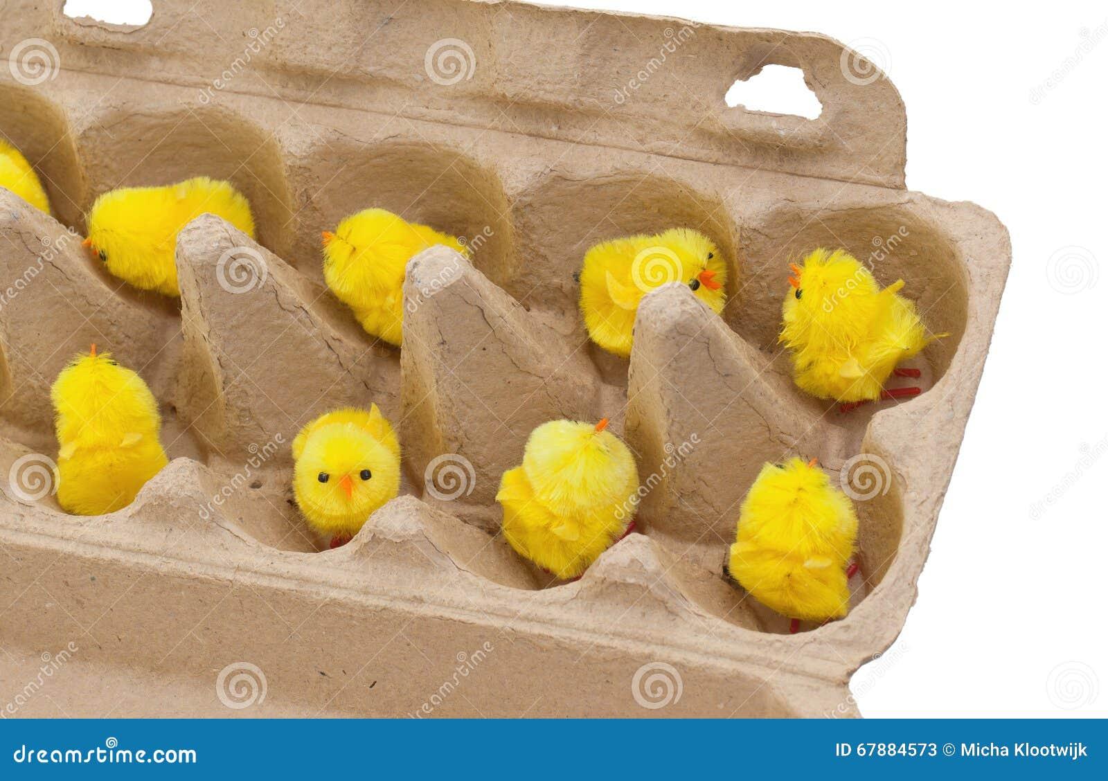 Poussins de Pâques dans une boîte à oeufs