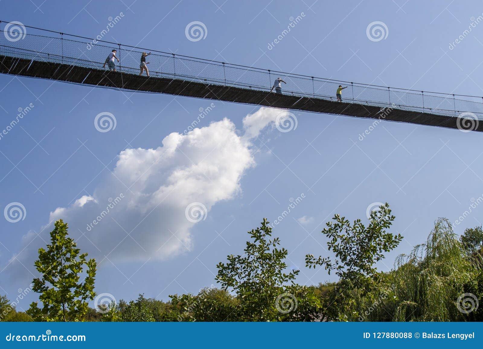 Povos que andam na ponte de suspensão sobre as árvores em h alto