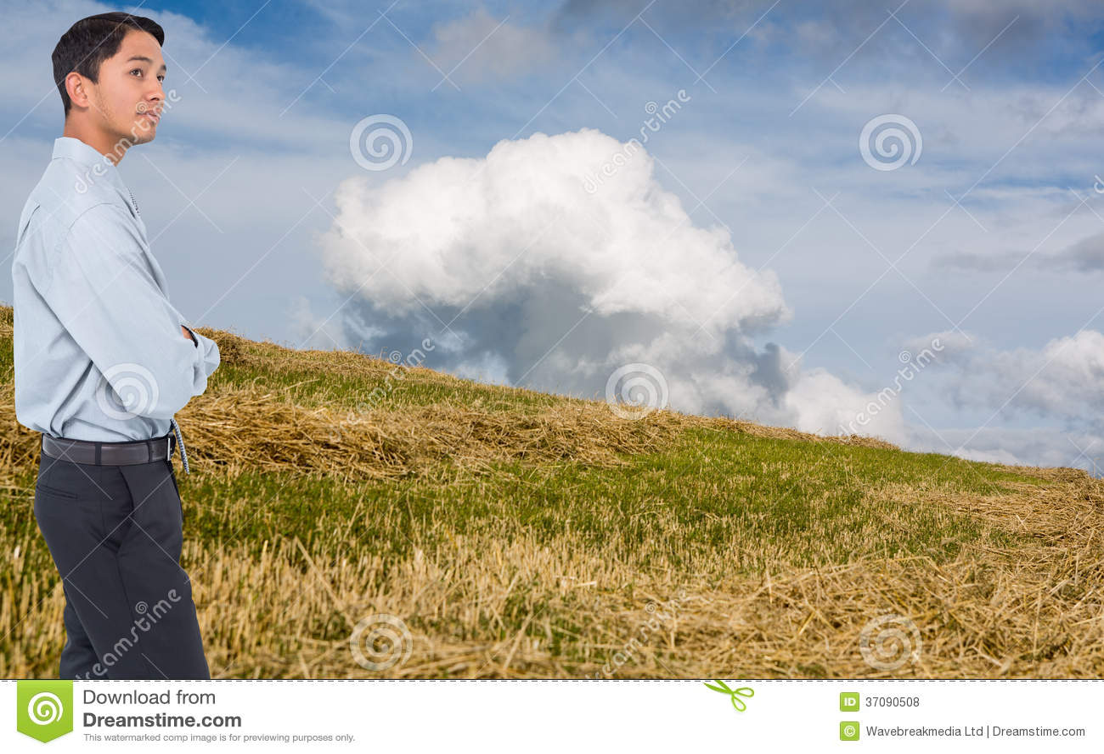 Download Poważny Azjatykci Biznesmen Zdjęcie Stock - Obraz złożonej z hairball, well: 37090508