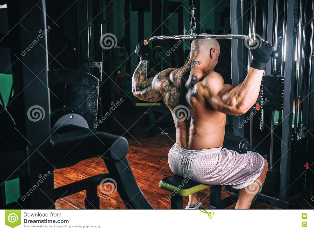 How to pump the broadest muscles 81
