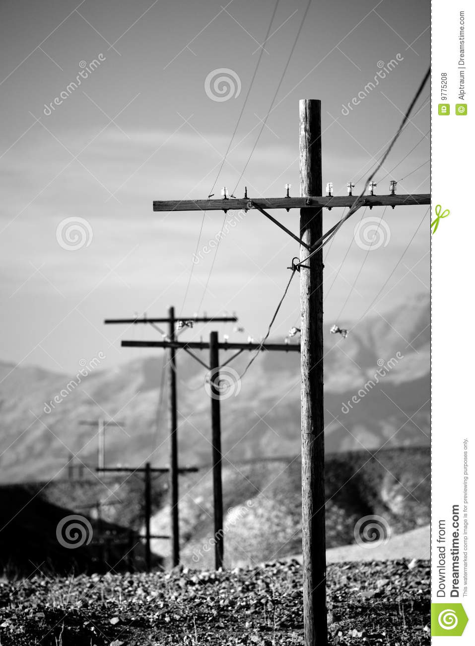 Electric Poles Power Lines : Power lines utility poles b w stock photo image