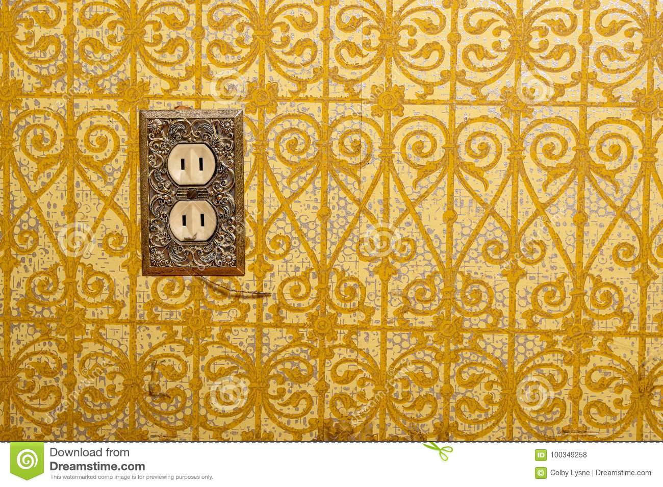 Power Socket In Decorative Wall Stock Photo Image Of Ornate Near