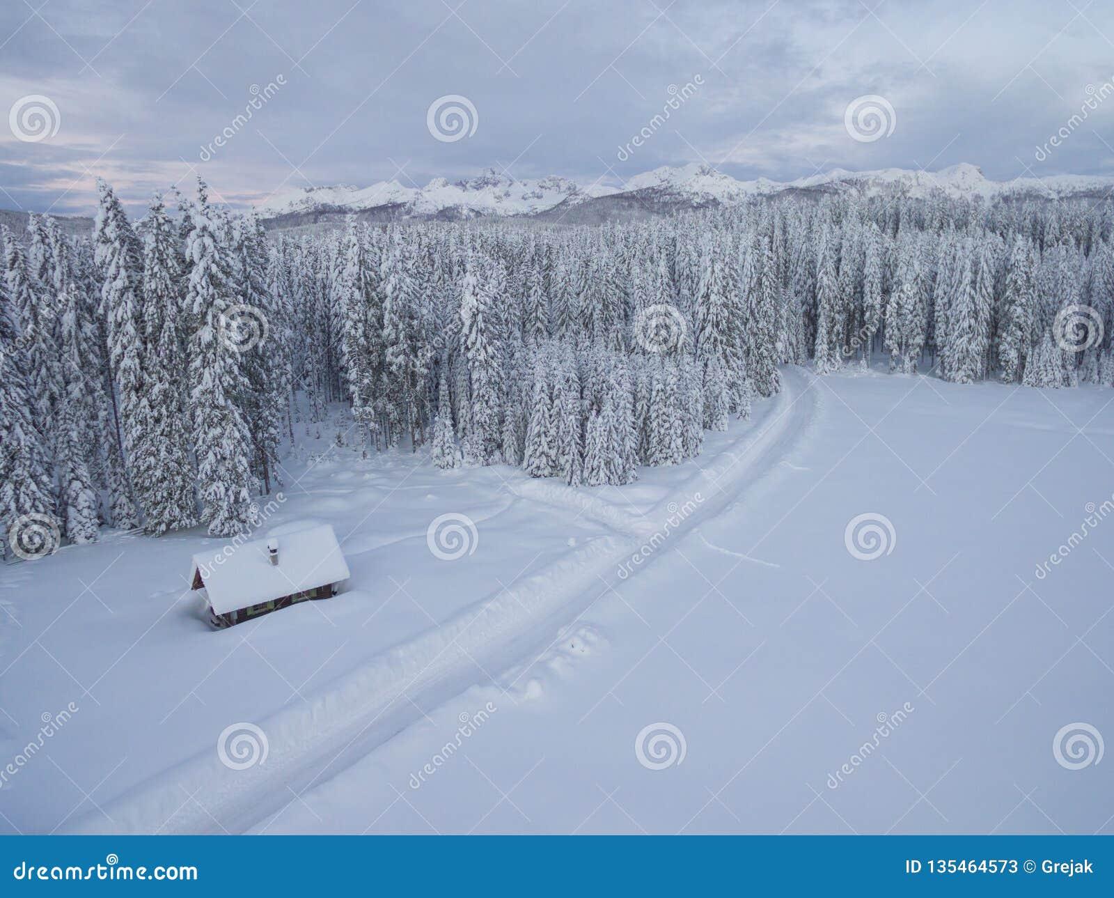 Powietrzna fotografia jeden drewniany dom obok lasu i gór zakrywających w śniegu za nim w zimnej zimie