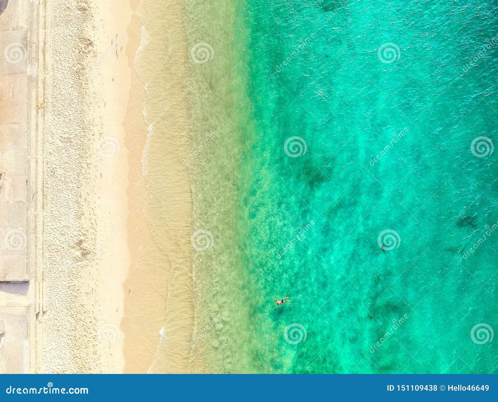 Powietrzna fotografia Sydney - rekin plaża