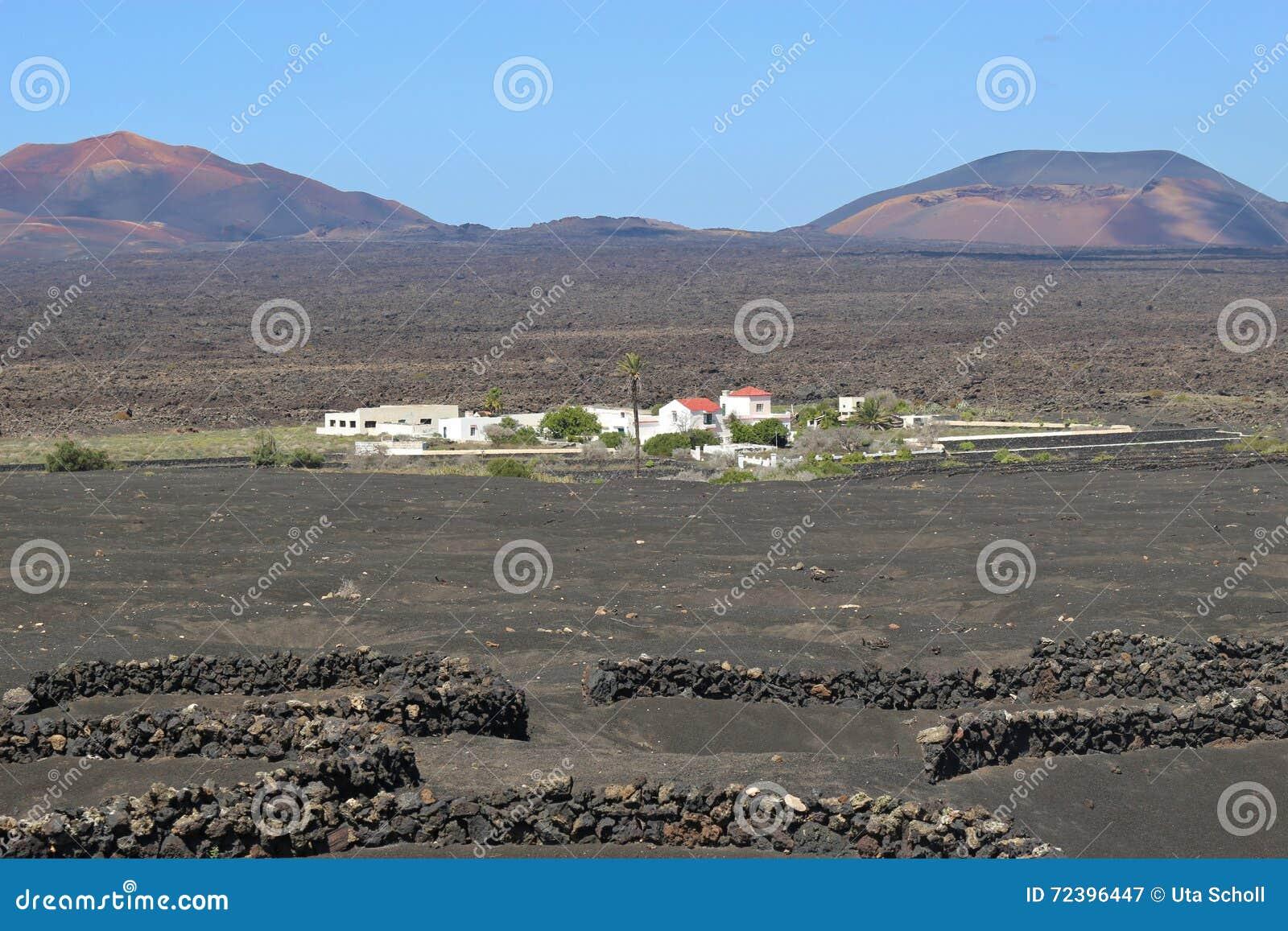 Powulkaniczny krajobraz i domy na Lanzarote, Hiszpania