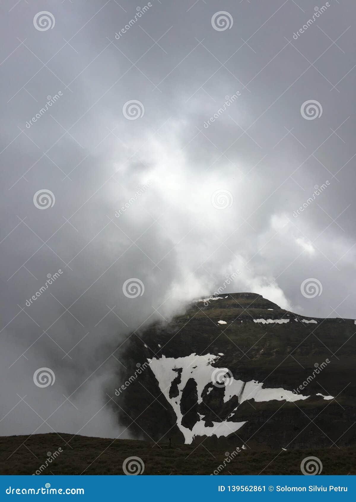 Pozwolić gałąź chmurny szmaragd folującego zieleni krajobraz halni otwarcia przepustki deszcze rzeczny sezonu nieba słońce biorą