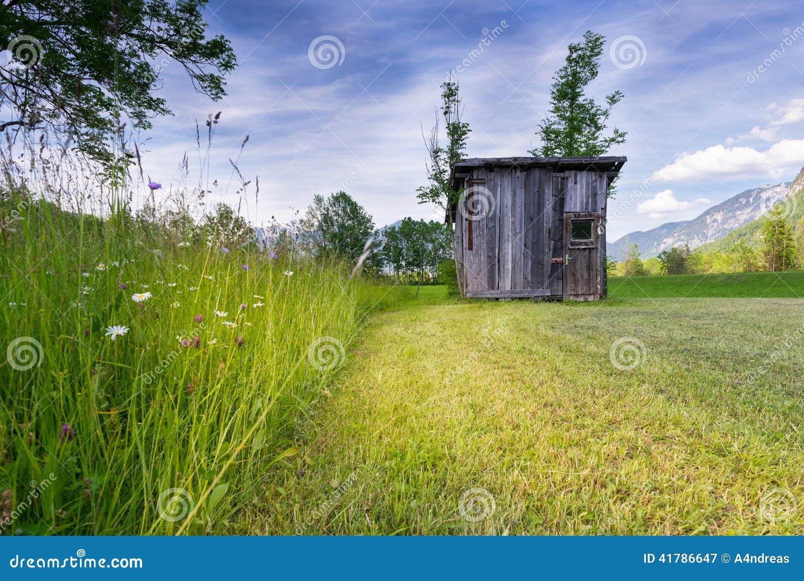 Pré rural avec la haute herbe et la vieille hutte en bois