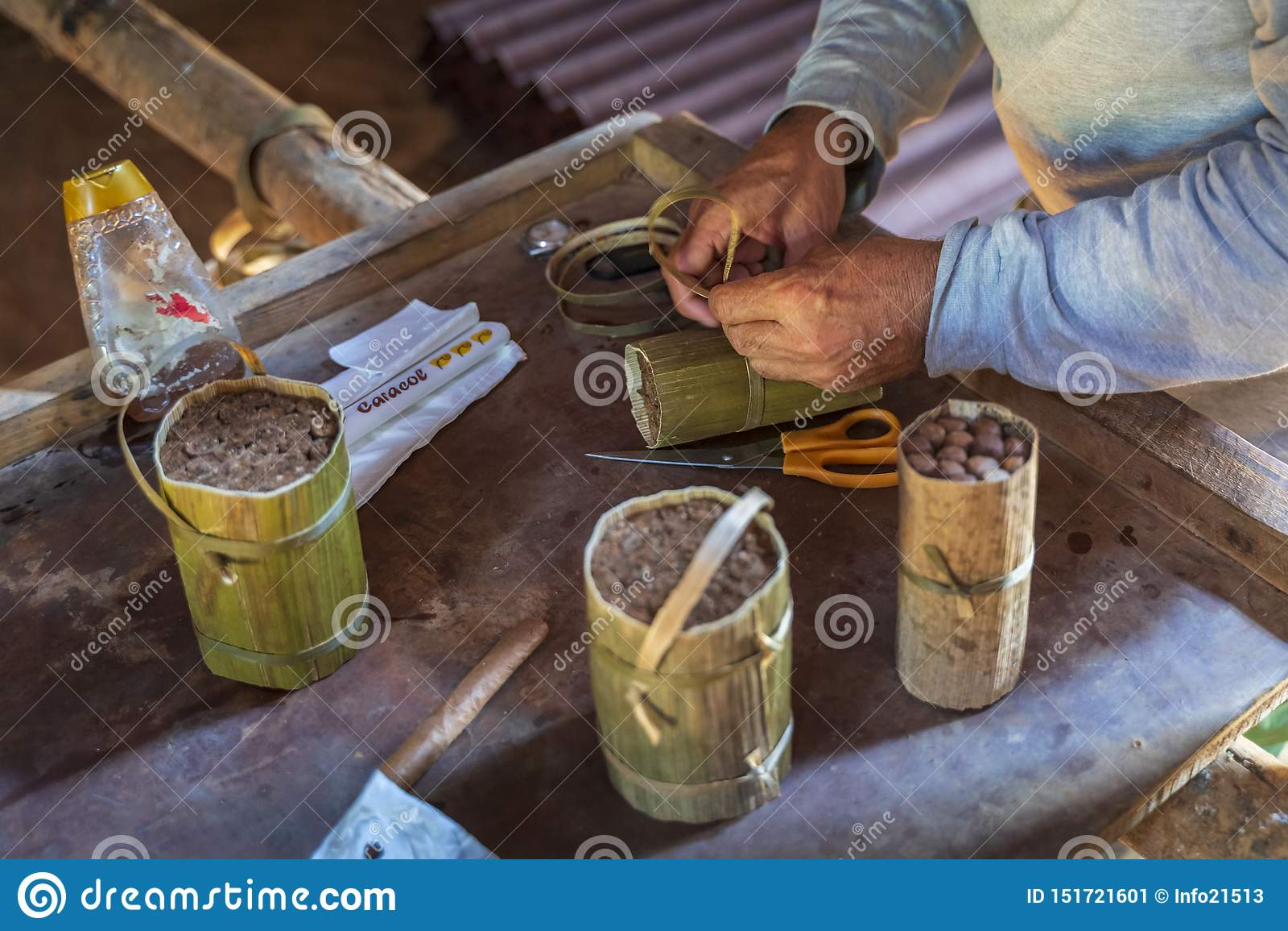 Préparation de cigare, Vinales, l UNESCO, Pinar del Rio Province, Cuba, les Antilles, les Caraïbe, Amérique Centrale