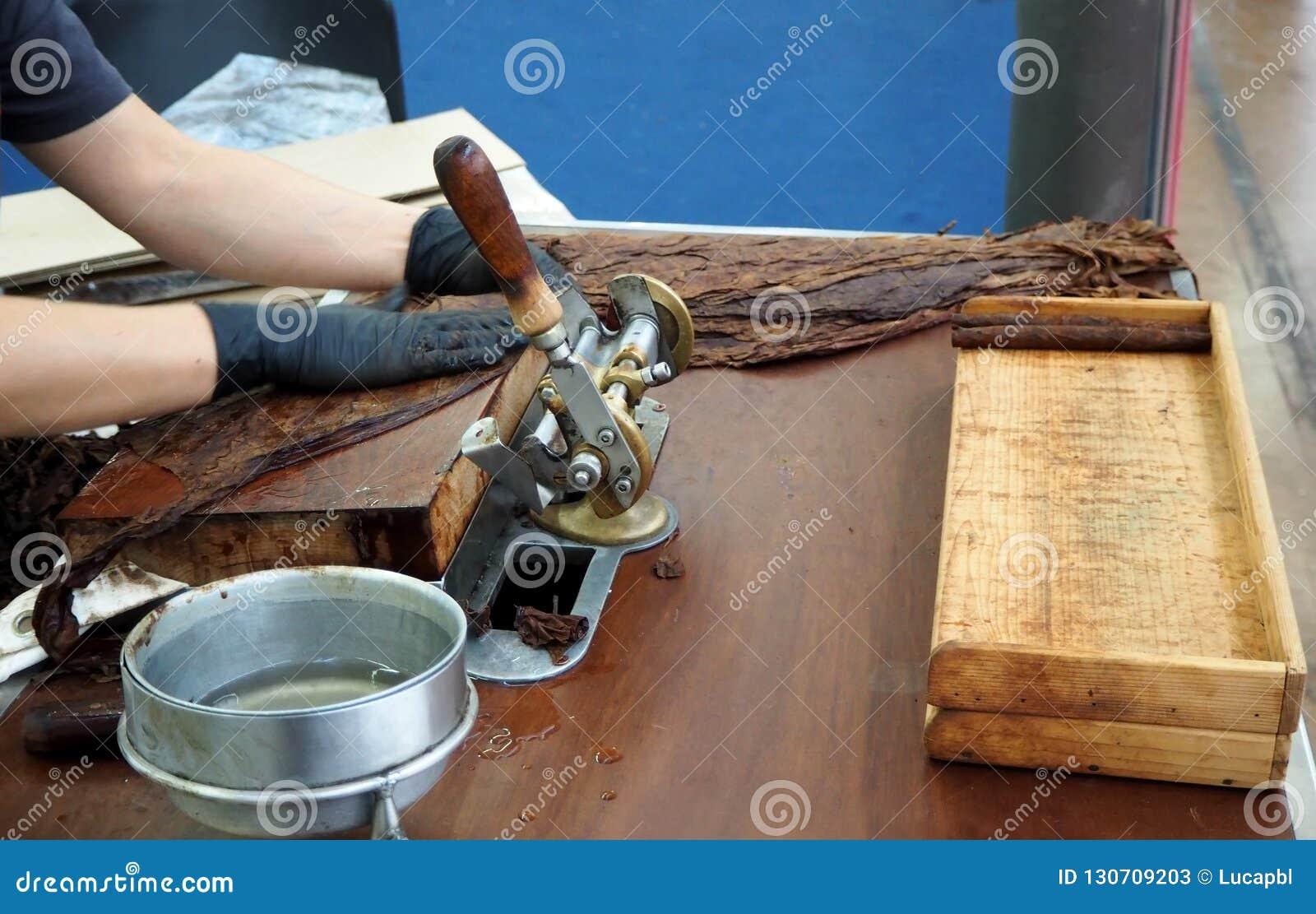 Préparation faite main de cigare avec de grandes feuilles de tabac