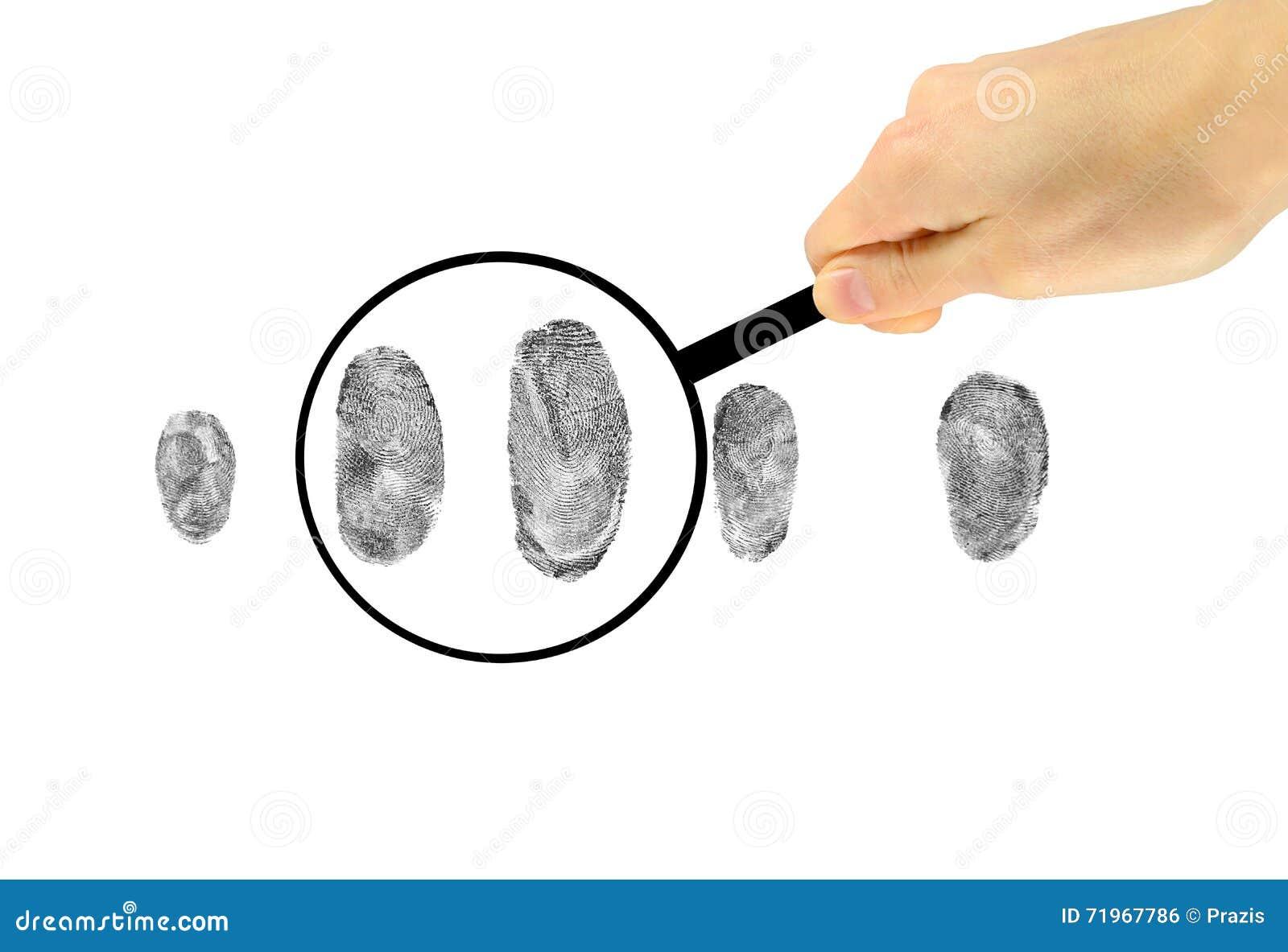 Prufung Von Fingerabdrucken Unter Einer Lupe Stockfoto Bild Von