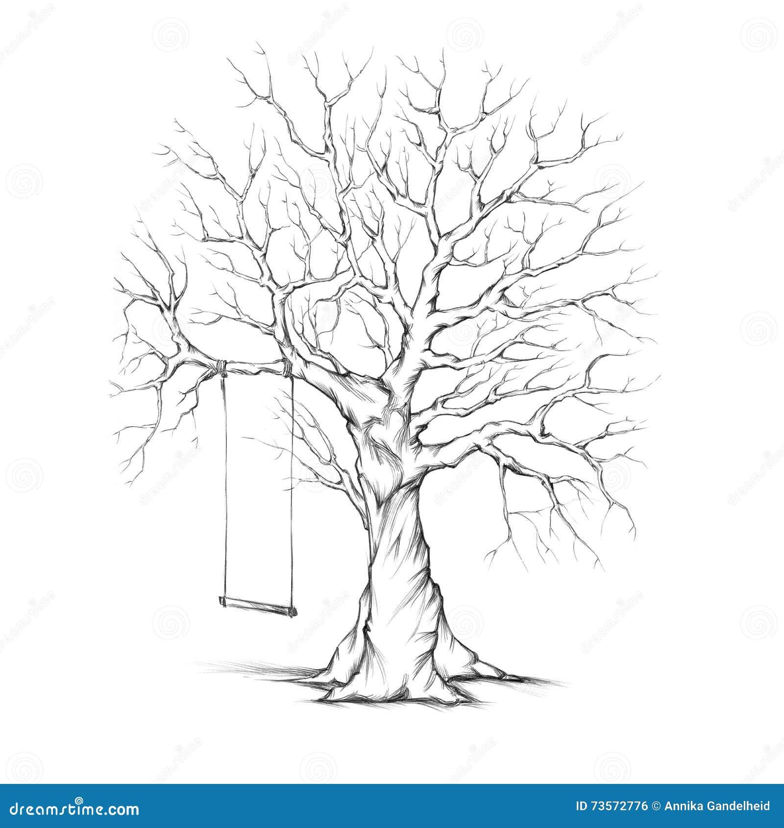 Prążkowany drzewo z huśtawką