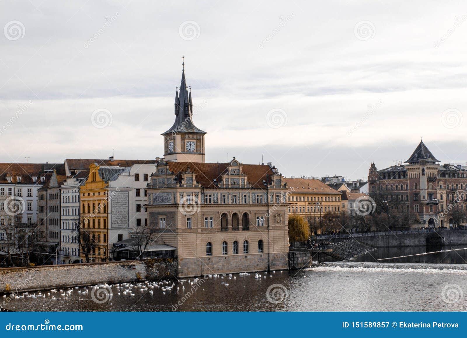 Praag Tsjechische Republiek 2016, November Mooie mening van de oude rivier van Praag en Vltava-op een bewolkte dag Zwanen door de