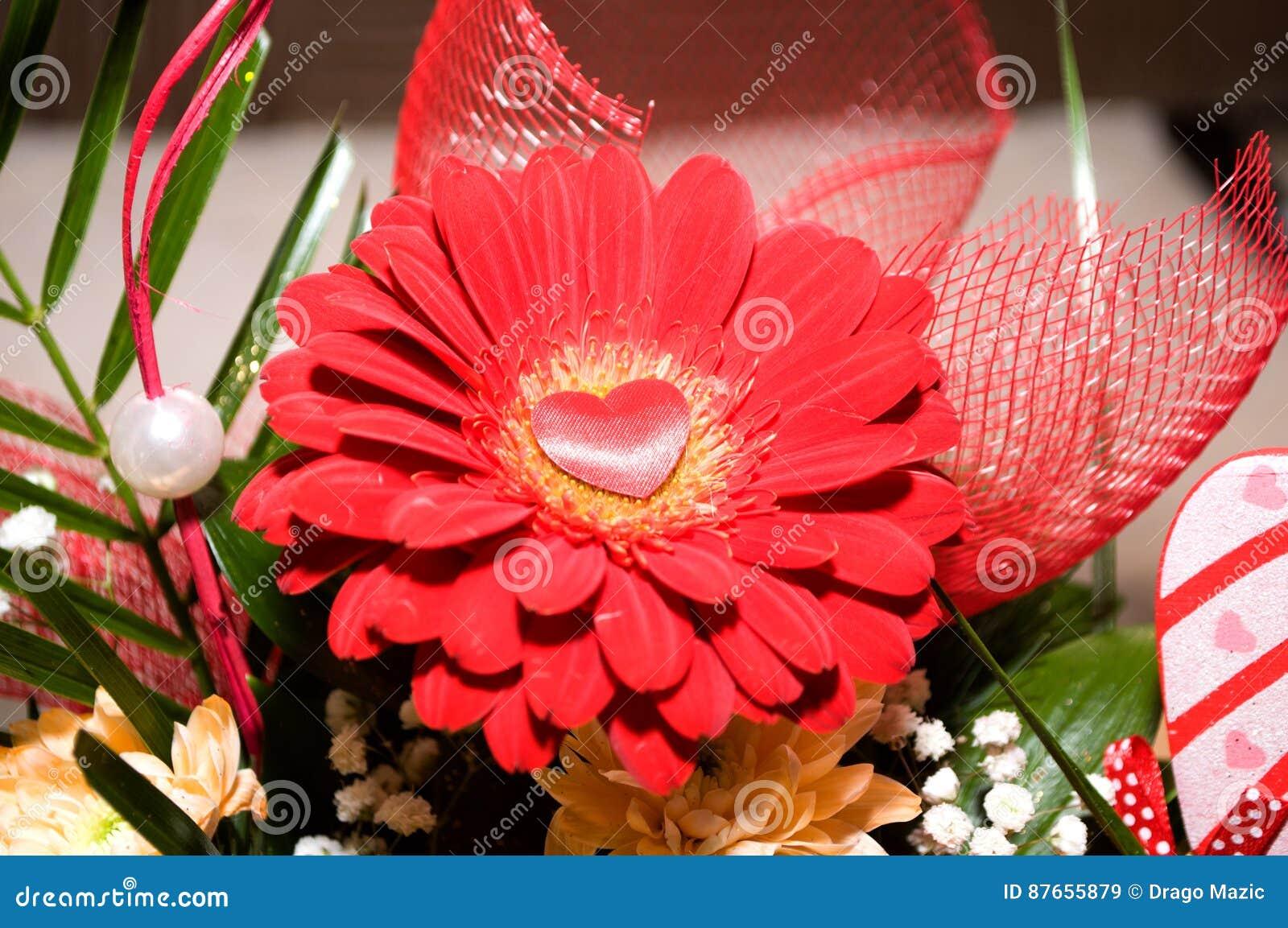 Pracht der roten Rosen seiner Schönheit und Frische