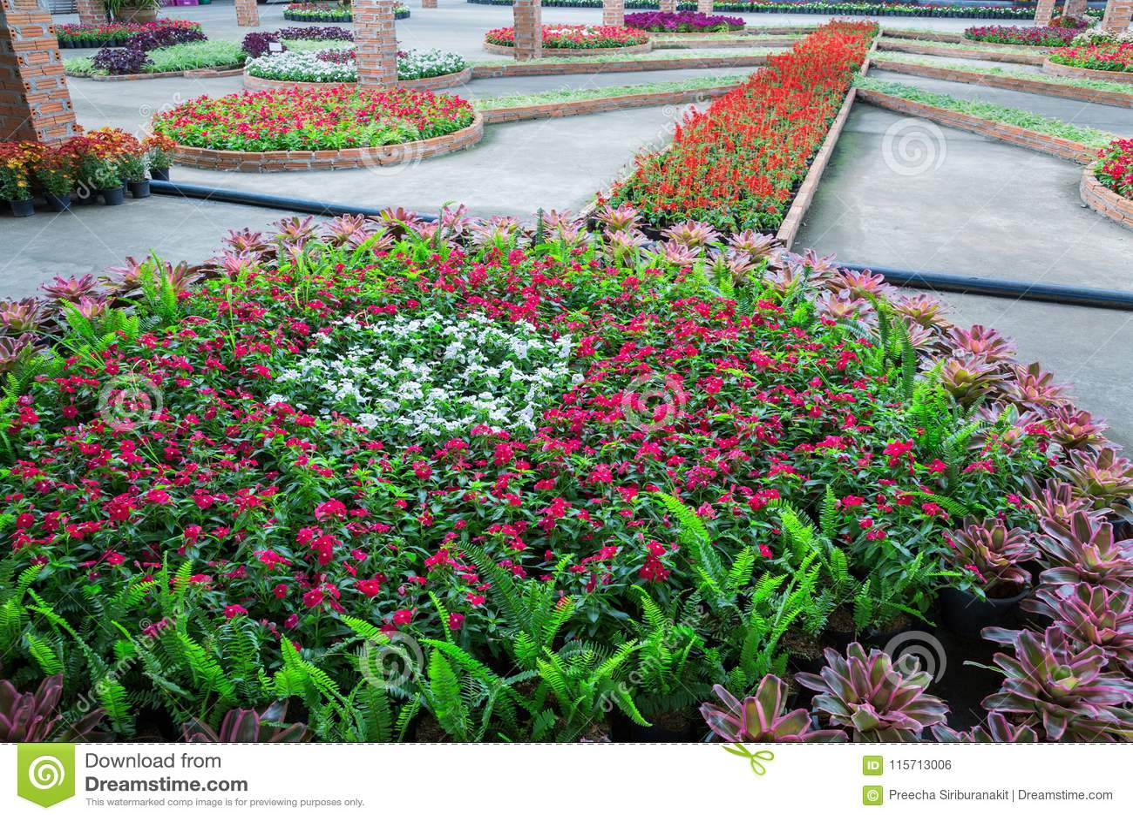 Pracht des vertikalen Gartens