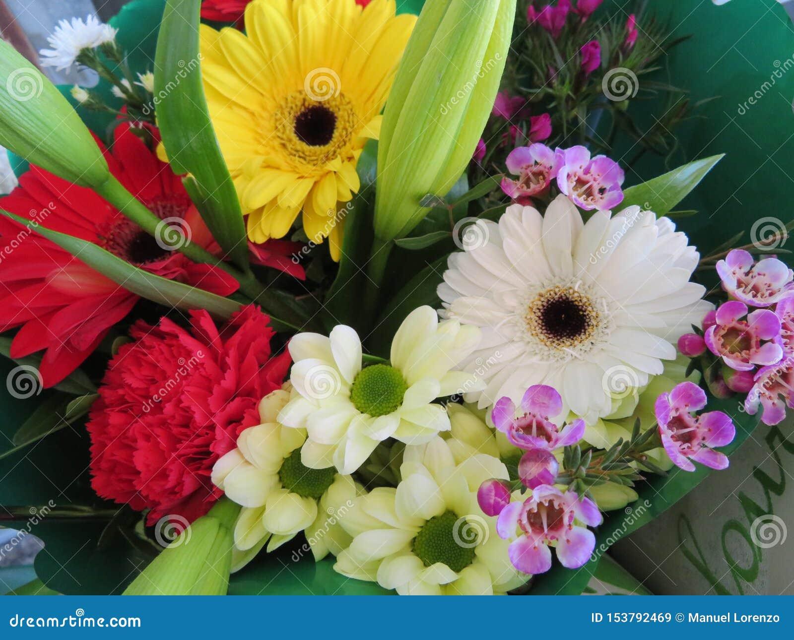 Prachtige bloemen met een zo goede kleur en een geur